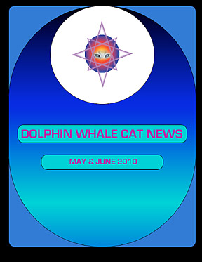 Newsletter-Cover-May-2010