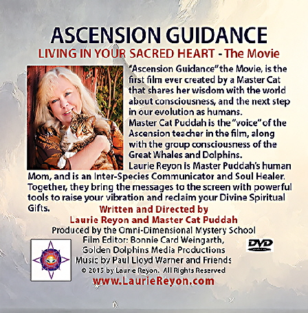 Ascension Guidance Back Cover for  DVD-2015-Revision-09-16-15-15