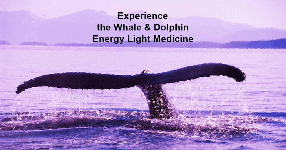 Whale-Tail-Healing-Page-C